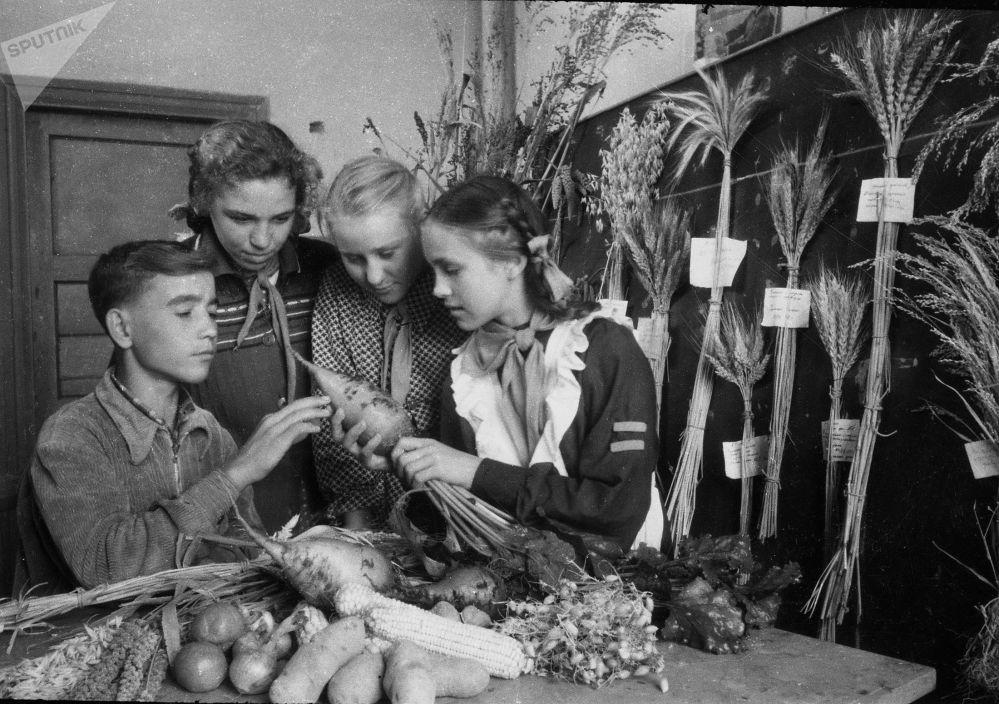 Ал учурда мектептен тышкары билим берүү дагы чоң мааниге ээ болчу. Окуучулар агрономдордун жетишкендиктери менен таанышууда. 1960-жыл
