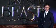 Британский актер Эдди Редмэйн на премьере фильма Премьера фильма Фантастические твари и где они обитают