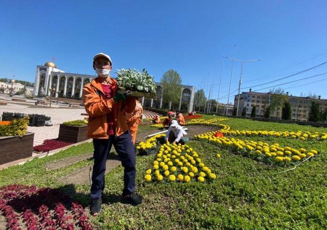 Город продолжает работу. С наступлением теплой погоды городские службы спешат обновить весенний облик столицы.