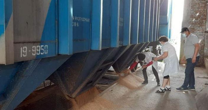 В Кыргызскую Республику из Российской Федерации доставлена вторая партия пшеницы в объеме 760 тонн.  На днях в страну прибудут еще 53 вагона пшеницы.
