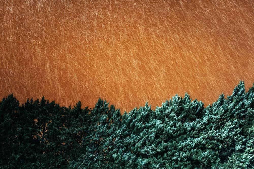 Снимок Night Snowfall итальянского фотографа Marco Minischetti, ставший финалистом в категории Open Landscape фотоконкурса 2020 Sony World Photography Awards
