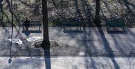 Мужчина сидит в парке.  Архивное фото