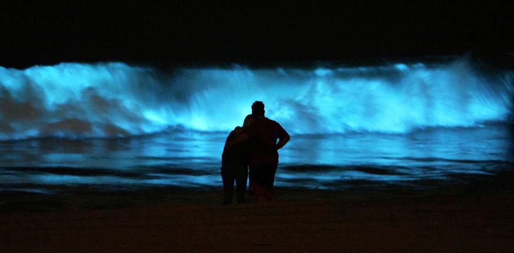 Пара наблюдает за неоновым пляжем Докуэилер Бич в Калифорнии. Береговая линия окрашена в ярко синий цвет благодаря переизбытку биолюминесцентных планктонных динофлагеллятов.