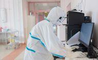 Медицинский работник в стационаре для больных с коронавирусной инфекцией. Архивное фото