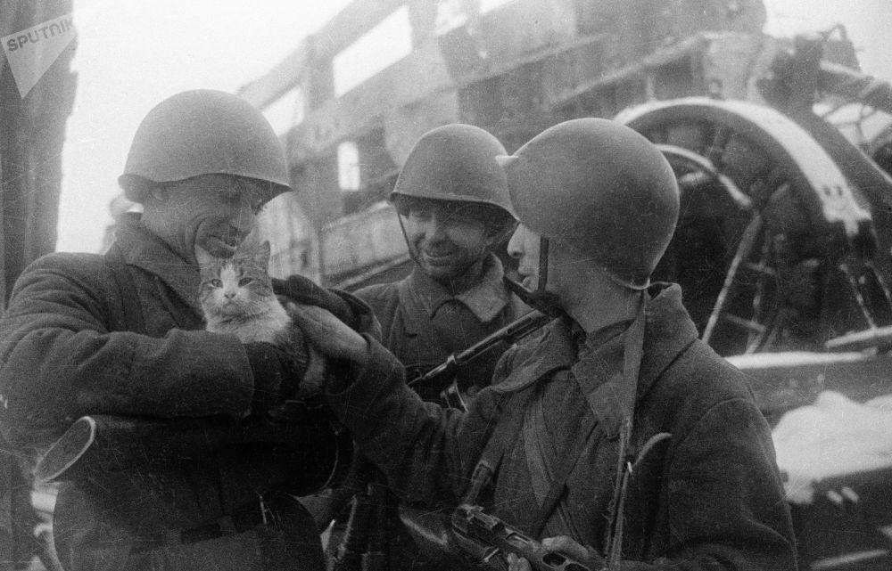 Мирные воспоминания. Сталинград, 1943 год.