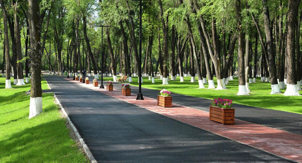 Парк имени героя Советского Союза Чолпонбая Тулебердиева в городе Бишкек. Архивное фото