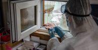 Врач-эпидемиолог берет анализ крови для экспресс-теста на коронавирус на санитарно-контрольном пункте. Архивное фото