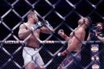 Организация Абсолютный бойцовский чемпионат (UFC) представила презентационный ролик (превью) к поединку тяжеловесов Франсиса Нганну и Жаирзиньо Розенстрайком, который пройдет в рамках турнира UFC 249.