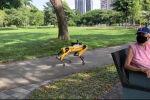 В Сингапуре робот-пес по кличке Spot начал патрулировать парк Бишан-Анг Мо Кио, напоминая пешеходам о важности социального дистанцирования.