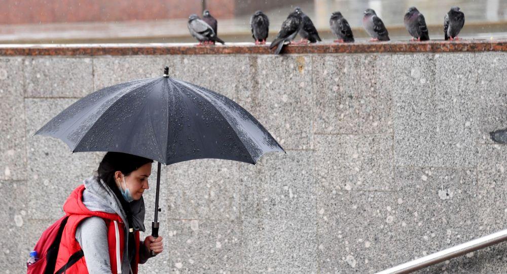 Девушка с зонтом во время дождя. Архивное фото