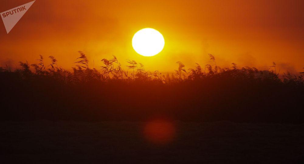 Поля перед закатом. Архивное фото