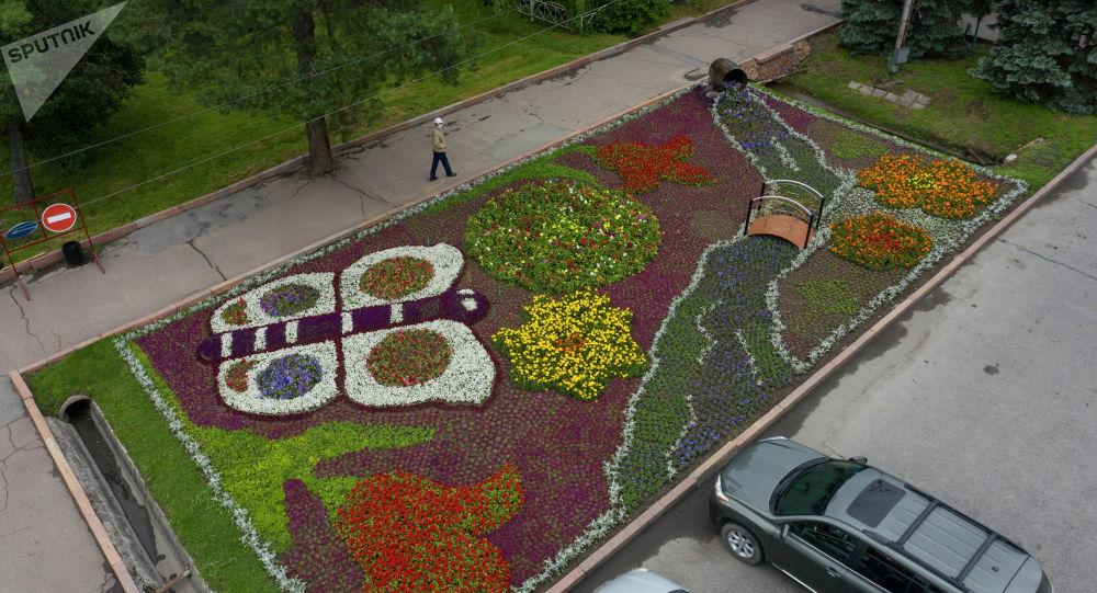 Вид на цветочную поляну на площади Ала-Тоо возле картинной галерее в Бишкеке. Архивное фото
