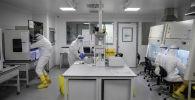 Ученые работают с образцами, взятыми для тестирования. Архивное фото
