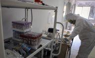 Медициналык кызматкер коронавирусту жуктурган бейтапар үчүн ооруканада. Архив