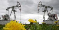 Нефть казуучу станция. Архив