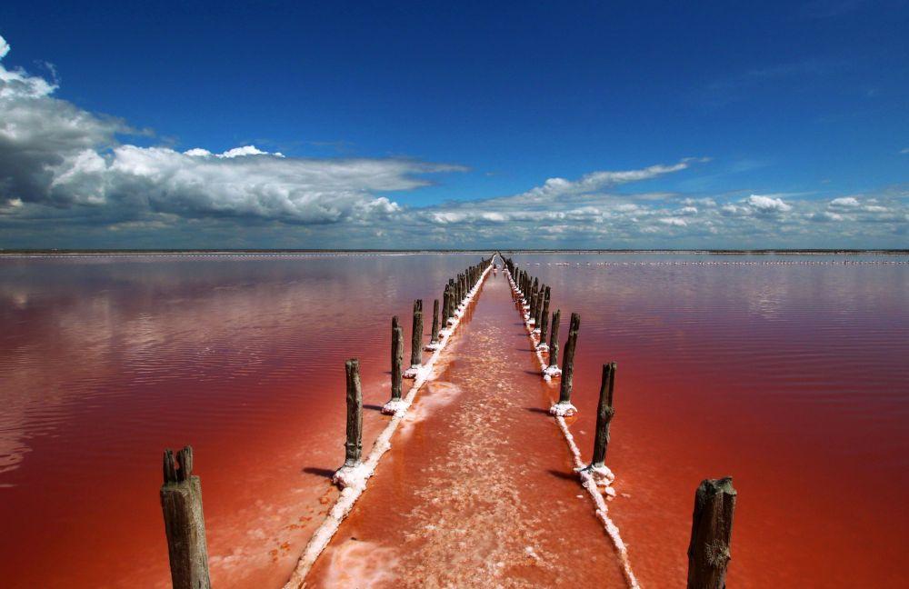Соленое озеро Сасык-Сиваш под Евпаторией. Водоросль Dunaliella salina окрашивает его воду в цвета от розового до багрового.