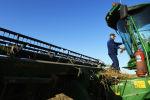 Комбайнер осматривает технику во время уборки пшеницы на полях. Архивное фото