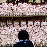 Посетитель фотографирует фигурки Манэки-нэко в токийском храме Готокудзи. Японцы считают, что фарфоровая кошка с поднятой лапой приносит удачу.