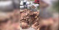 Сотрудники Госслужбы по борьбе с экономическими преступлениями КР пресекли контрабанду шкур норки и ондатры из Казахстана, сообщила пресс-служба ведомства.