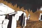 Как наши предки наказывали за измену? 16 вопросов о преступлениях кочевников