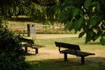 Скамейки в парке. Архивное фото