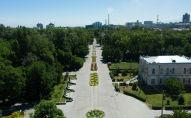 Аллея в дубовом парке в центре Бишкека. Архивное фото