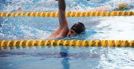 Спортсмены занимаются плаванием в бассейне