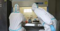 Сотрудники лаборатории изучают образцы. Архивное фото