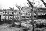 Концентрационный лагерь. Архивное фото
