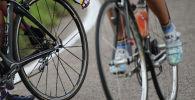 Велосипедчен спортчулар. Архив